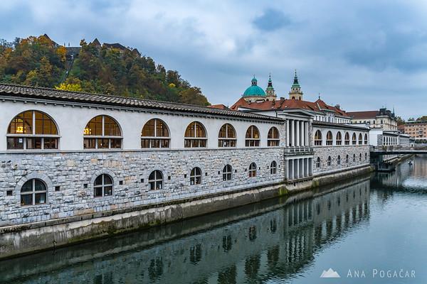Along the Ljubljanica River in Ljubljana