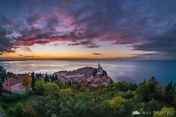 Piran from the city walls at sunset
