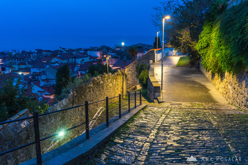 Piran from the church hill before dawn