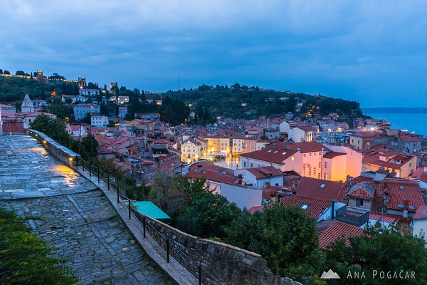 Piran from the church hill on a rainy morning
