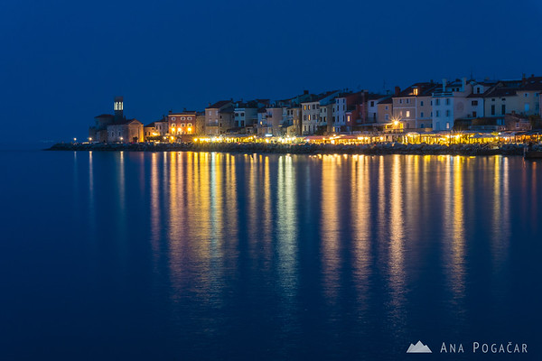 Piran Punta during blue hour