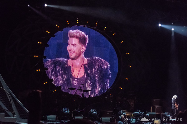 Queen + Adam Lambert concert in Padova (Italy) - June 25, 2016
