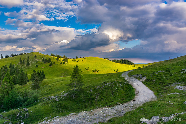 Velika planina in warm late afternoon light