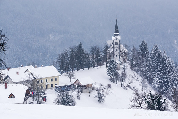 Village of Javorje in snow
