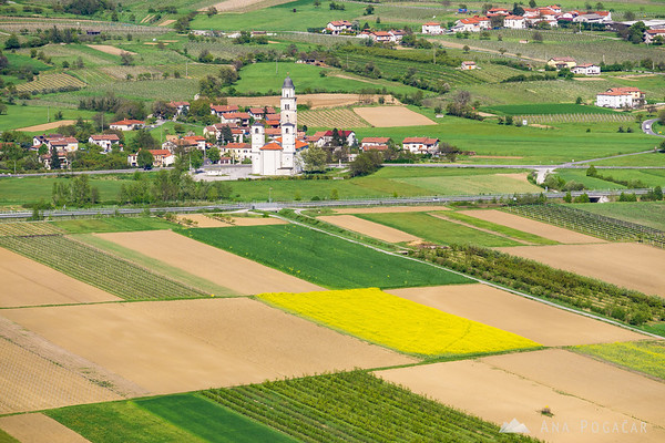 Fields around Budanje, Vipavska