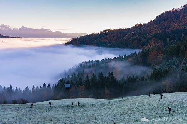 A photographer's paradise in the hills above above Škofja Loka on a misty morning