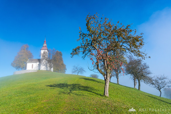 St. Thomas church and last traces of fog