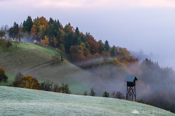 Misty morning in the hills above Škofja Loka