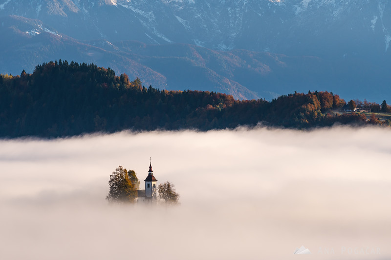 St. Thomas church peaking from the sea of fog on a sunny fall morning
