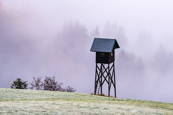 Ranger's lookout in the mist at dawn