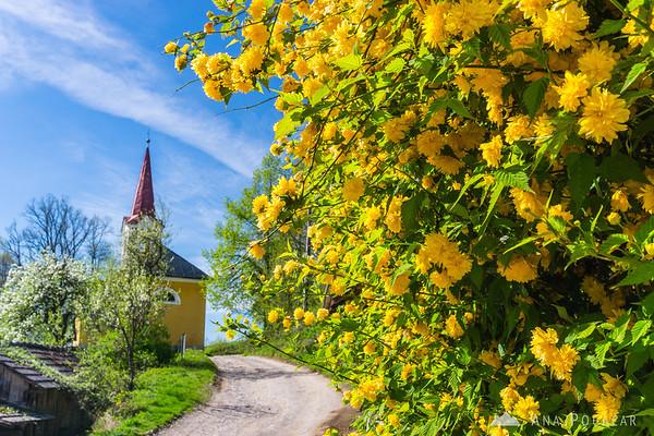 Village of Krašnji vrh, Bela krajina
