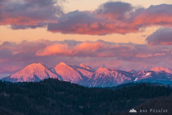 The Kamnik Alps glowing in the sunset light as seen from Smrečje in the Polhograjsko hribovje hills: Mts. Kočna, Grintovec, Skuta, Kalški greben, Brana, Krvavec, Planjava