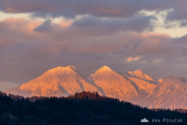 The Kamnik Alps glowing in the sunset light as seen from Smrečje in the Polhograjsko hribovje hills: Mts. Kočna, Grintovec, Skuta and Kalški greben