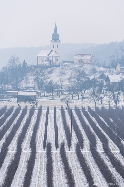 Views from Zaprice hill across the orchard to the Podgorje church