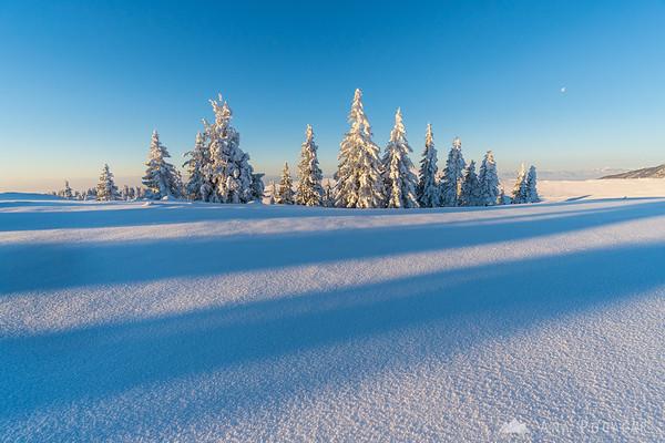 Glorious winter morning on Velika planina