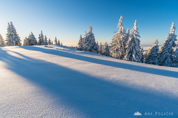 Glorious winter morning on Velika planina