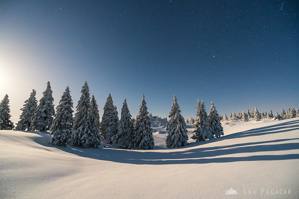 Moonlit landscape on Mala planina