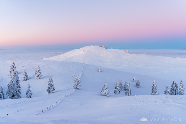 Pink sky before the sunrise on Velika planina
