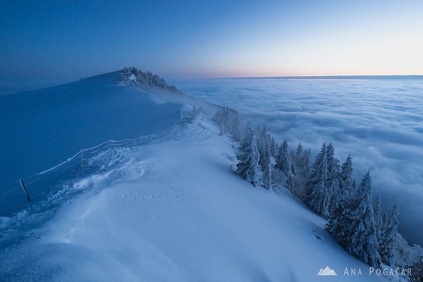 Looking at the sea of fog in the valley from Velika planina at dusk