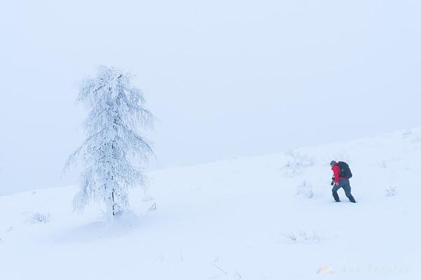 Snowy and foggy Mala planina
