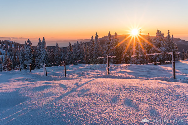 Winter sunrise on Velika planina