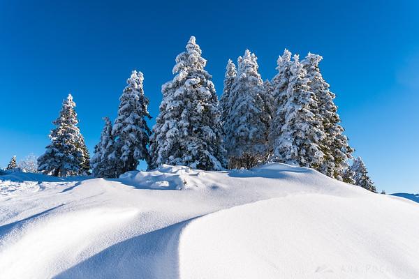 Glorious winter morning on Mala planina