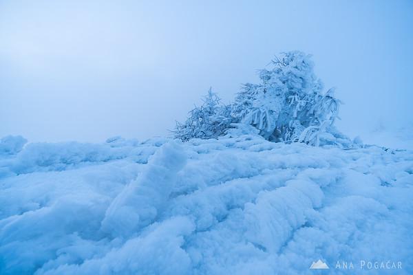 Frozen wonderland on Velika planina