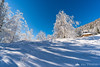 Glorious winter morning on the hike down from Velika planina