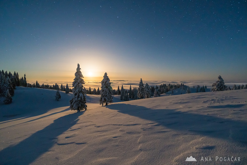 Winter fairytale on Velika planina - Feb 13-14, 2017