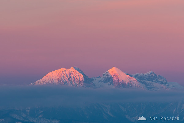 Pink Kamnik Alps from Goli vrh