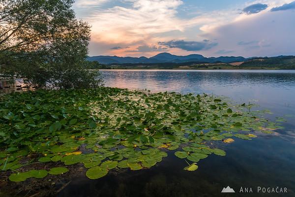 Velenje Lake shore