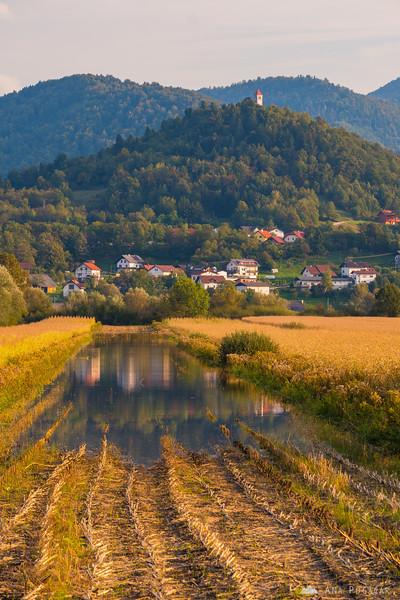 Flooded Ljubljana Marshes
