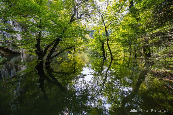 Totally submerged Great natural bridge of Rakov Škocjan