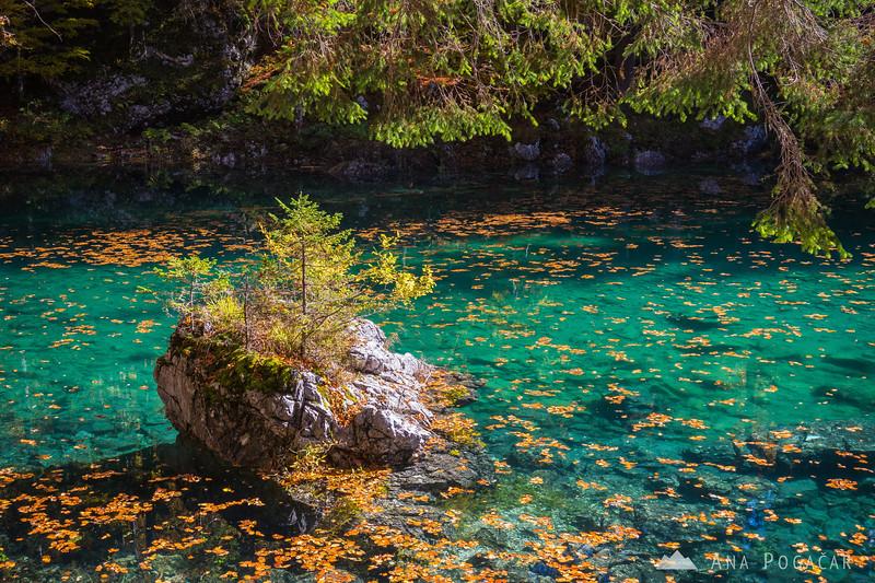 Fall colors at Mangart Lakes