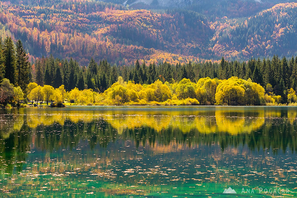 Fall colors at Mangart Lakes