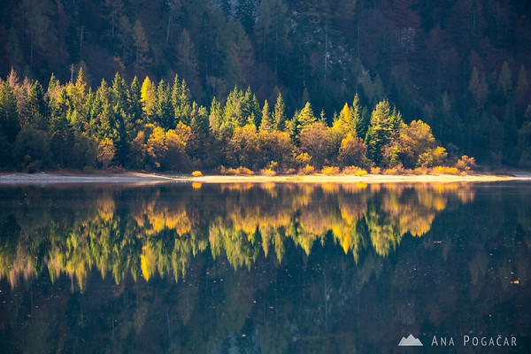 Perfect reflection in Lago del Predil (Rabeljsko jezero) on a sunny fall morning