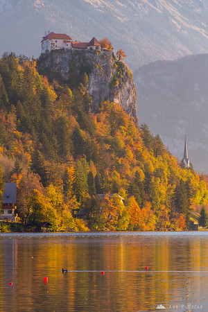 Lake Bled on a sunny fall morning