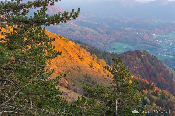 Last sun rays on the slopes of Mt. Kamniški vrh