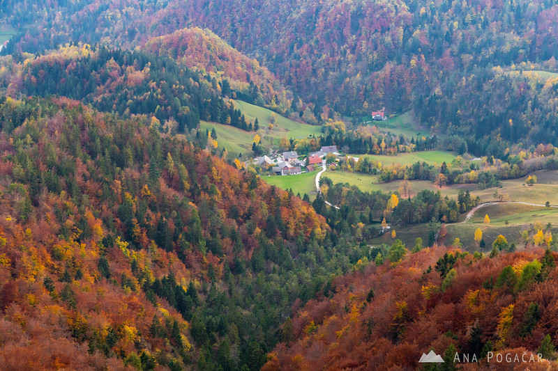 Colorful slopes of Mt. Kamniški vrh, and the village of Slevo