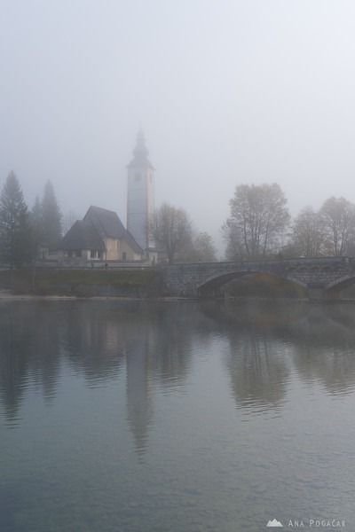 Foggy morning at Lake Bohinj