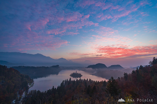 Pink sunrise over Lake Bled from the Ojstrica hill