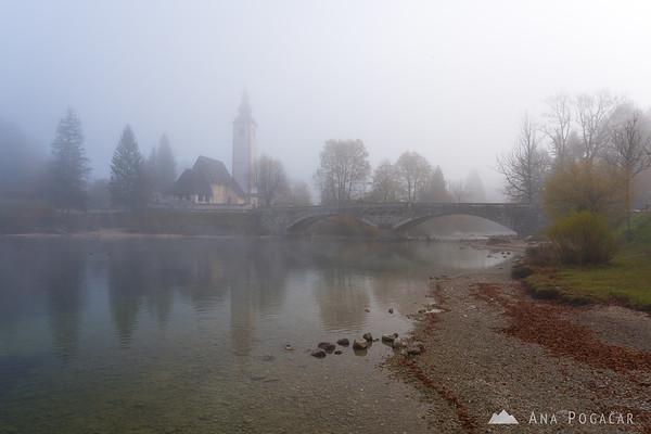 Foggy morning at Lake Bohinj