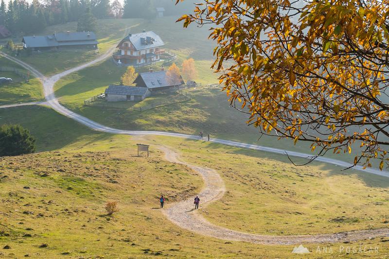 Sunny fall afternoon at Planina Jezerca
