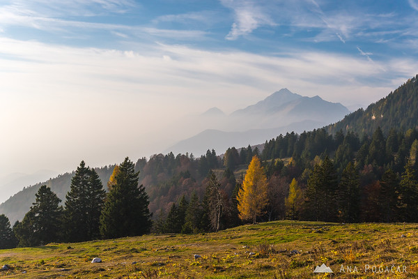 Misty sunny afternoon on the slopes of Mt. Kržišče near Krvavec