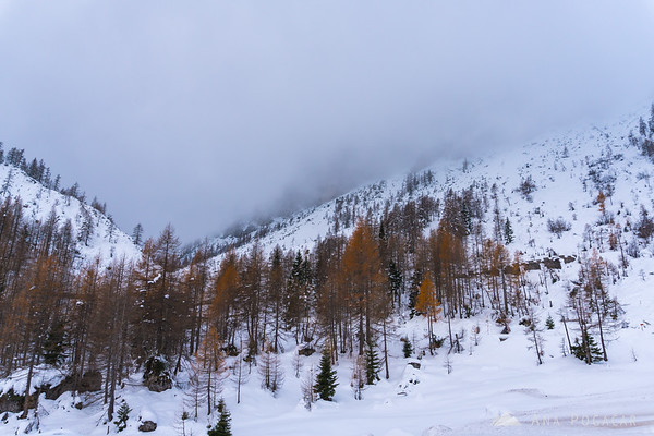 Snow and fall colors on the Vršič pass