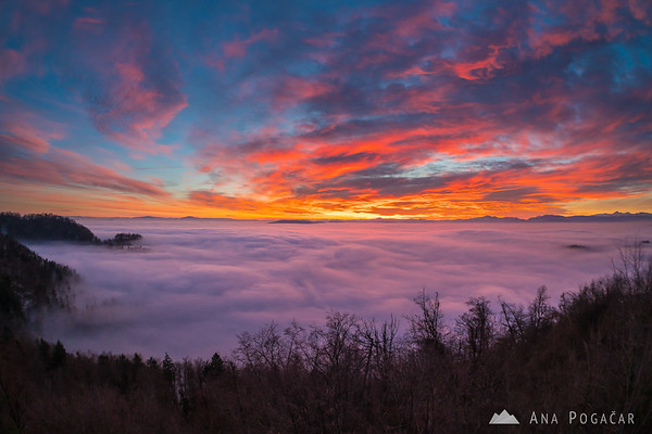 Crazy sunset colors over the sea of fog