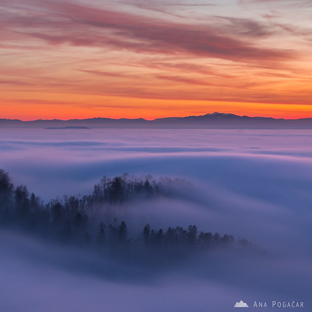 Waves of fog after sunset