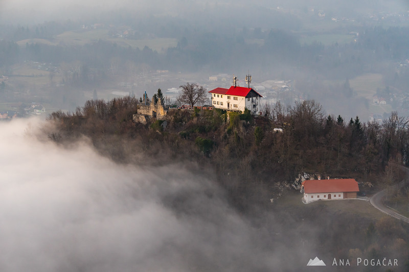 Stari grad above the fog