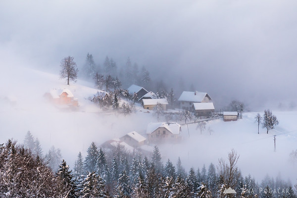 Village in the mist