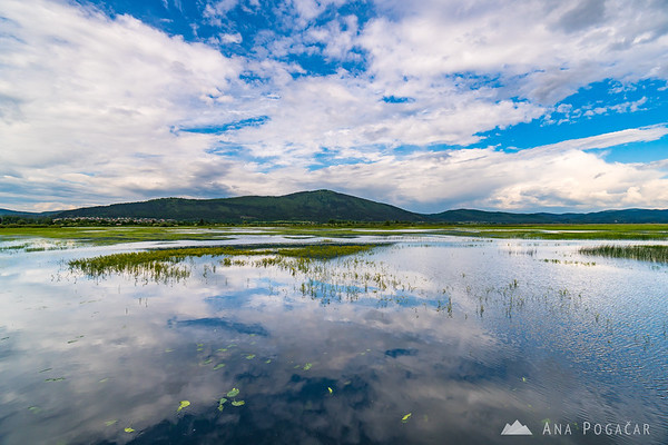 Lake Cerknica on a spring afternoon